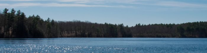 walden-pond